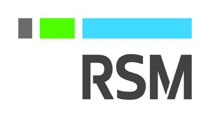 RSM – Consulting Assistant, Audit Associate